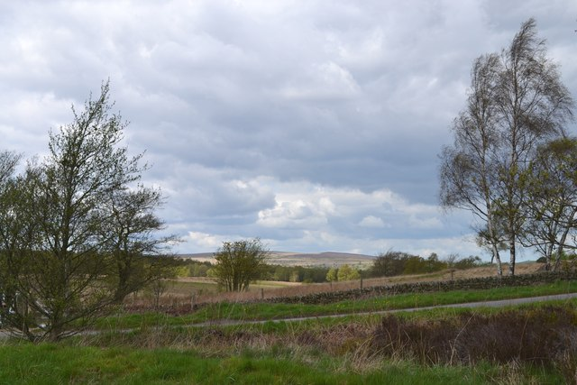 View northwards from the edge of Shillito Wood