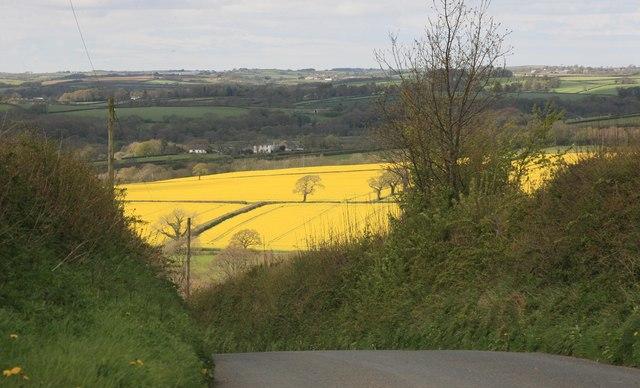 Rural North Cornwall