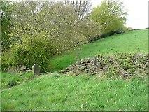 SE0421 : Gap in a field wall on Sowerby Bridge Footpath 135 by Humphrey Bolton