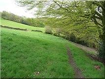 SE0421 : Sowerby Bridge Footpath 135 crossing a meadow  by Humphrey Bolton