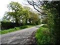 SJ7273 : Back Lane by Christine Johnstone