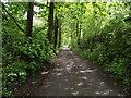 SD7514 : Two Brooks Lane, Hawkshaw by Philip Platt