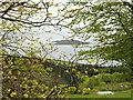 NS0122 : Pladda through the trees by Brian Robertson