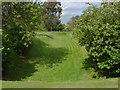 TQ0467 : Abbey Gardens, Chertsey by Alan Hunt