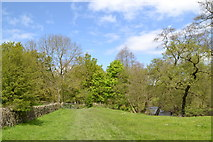 SK2666 : To Bank Wood and the River Derwent by Neil Theasby