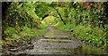 J4582 : Clandeboye Avenue, Helen's Bay (7) by Albert Bridge