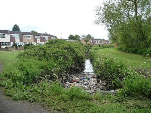 Rubbish in the brook, Radleys Park