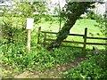 TG0906 : Carleton Forehoe, Low Road by Jeremy Osborne