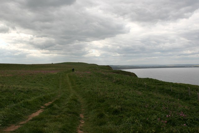 Headland Way on Bempton Cliffs