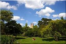 SP5206 : University of Oxford Botanic Garden by Jeff Buck