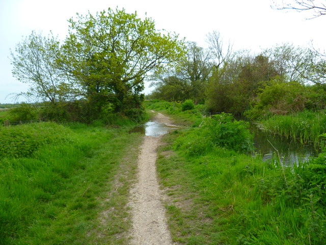 Flooding across footpath in the Meon Valley