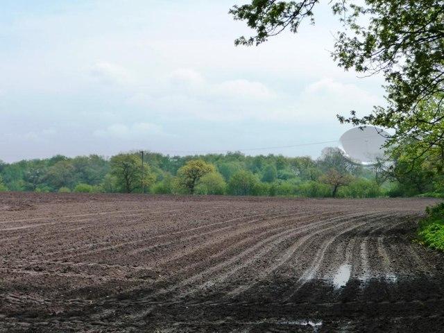 Soggy corner of bare field, east of Buckden Lane