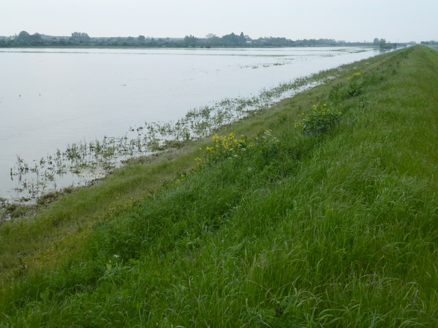 Man before birds - The Ouse Washes at Mepal