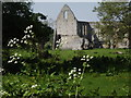 TQ0457 : Ruined Newark Priory by Colin Smith