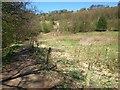 SE1664 : Meadow by the Nidd by Derek Harper