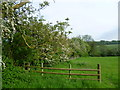 TL0699 : Old hedgerow outside Wansford by Marathon