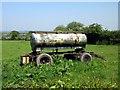 SJ4763 : Bowser in a field near Greenlooms by Jeff Buck