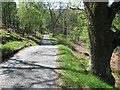 NN8759 : The South Loch Tummel Road by Richard Webb