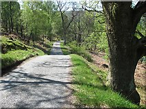 NN8759 : The South Loch Tummel Road by Richard Webb