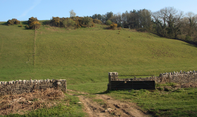 Hillside and gateway north of Candleston Castle