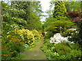 TQ9457 : Woodland Garden, Doddington Place, Doddington by pam fray