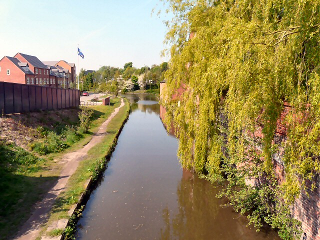 Willow over the Peak Forest Canal