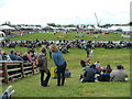 SX9891 : Devon County Show - main arena by Chris Allen