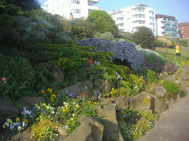 Public gardens on Western Esplanade