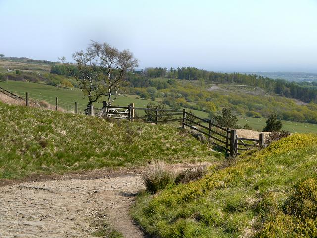 Rivington Moor, Brown Hill