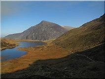 SH6459 : Path by Llyn Idwal by N Chadwick