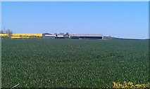 NU0341 : Arable field west of Kentstone by Graham Robson