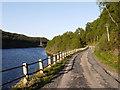 NH3655 : Minor road alongside Loch Meig by Trevor Littlewood