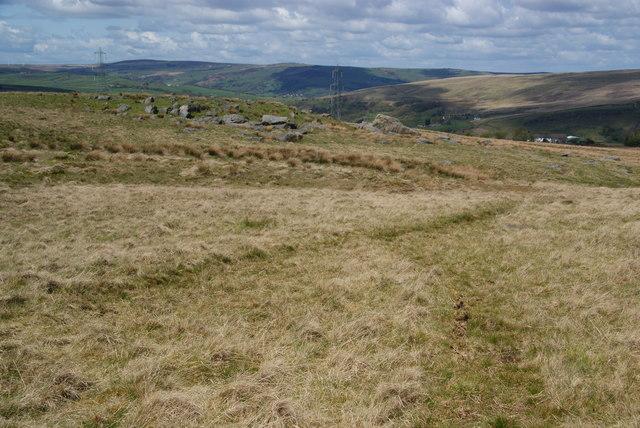 Ferny Hill Rocks