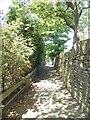 SE1231 : Footpath - Pasture Lane by Betty Longbottom