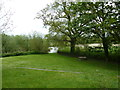 ST9004 : St. Mary, Charlton Marshall: churchyard (8) by Basher Eyre