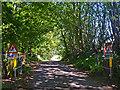 NS3866 : Minor road near Bridge of Weir by William Starkey