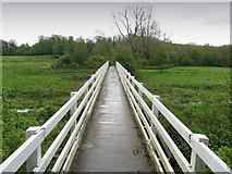 TQ5203 : Footbridge over the River Cuckmere by Chris Heaton