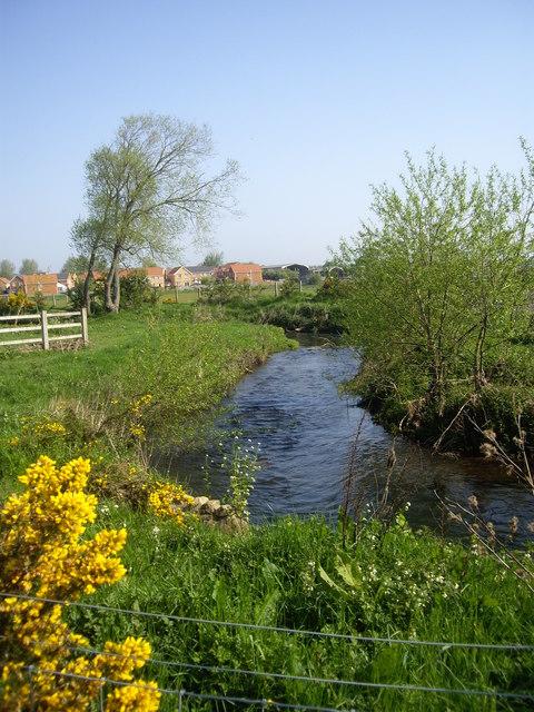 An upstream reach of the River Gaunless