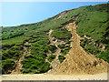 TG2938 : Coastal erosion on Trimingham beach by Evelyn Simak
