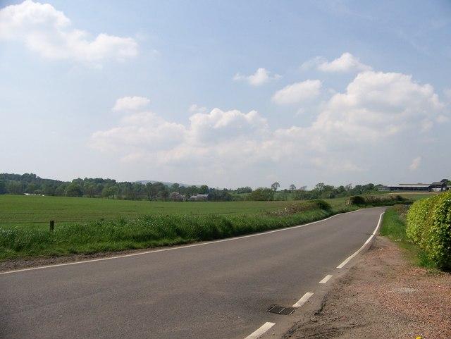 The road at Barnellan