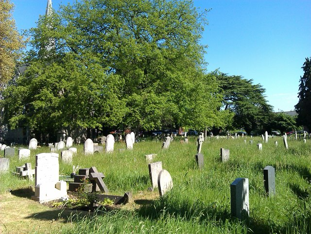 Bitterne churchyard