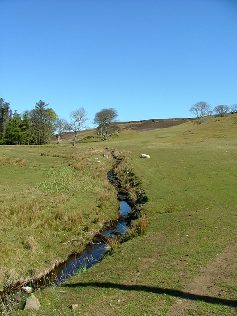 A burn runs through grazing land at Cuidrach