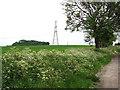 TL5762 : Electricity pylon in field by Cadenham Farm by Evelyn Simak