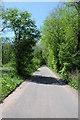 SO2921 : Road in Cwm Coedycerrig by Philip Halling