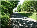 SK0546 : The lane south of Moneystone by Christine Johnstone