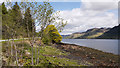 NG9120 : Minor road near shore of Loch Duich by Trevor Littlewood