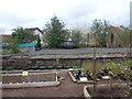 ST6074 : Bristol: Stapleton Road Community Garden from the station by Chris Downer