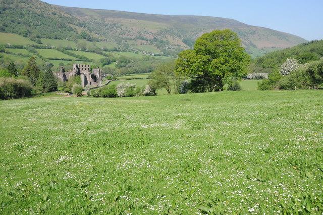 Field above Llanthony Priory