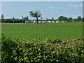 SJ8014 : Caravan Club site at Wyndford Mill farm by Richard Law