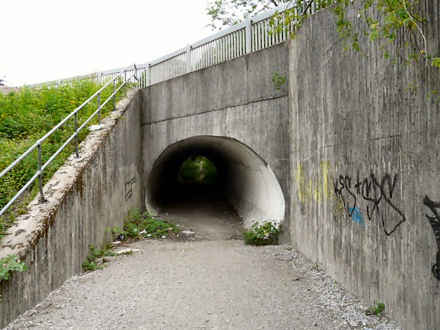 Tunnel Under Parrs Wood Road